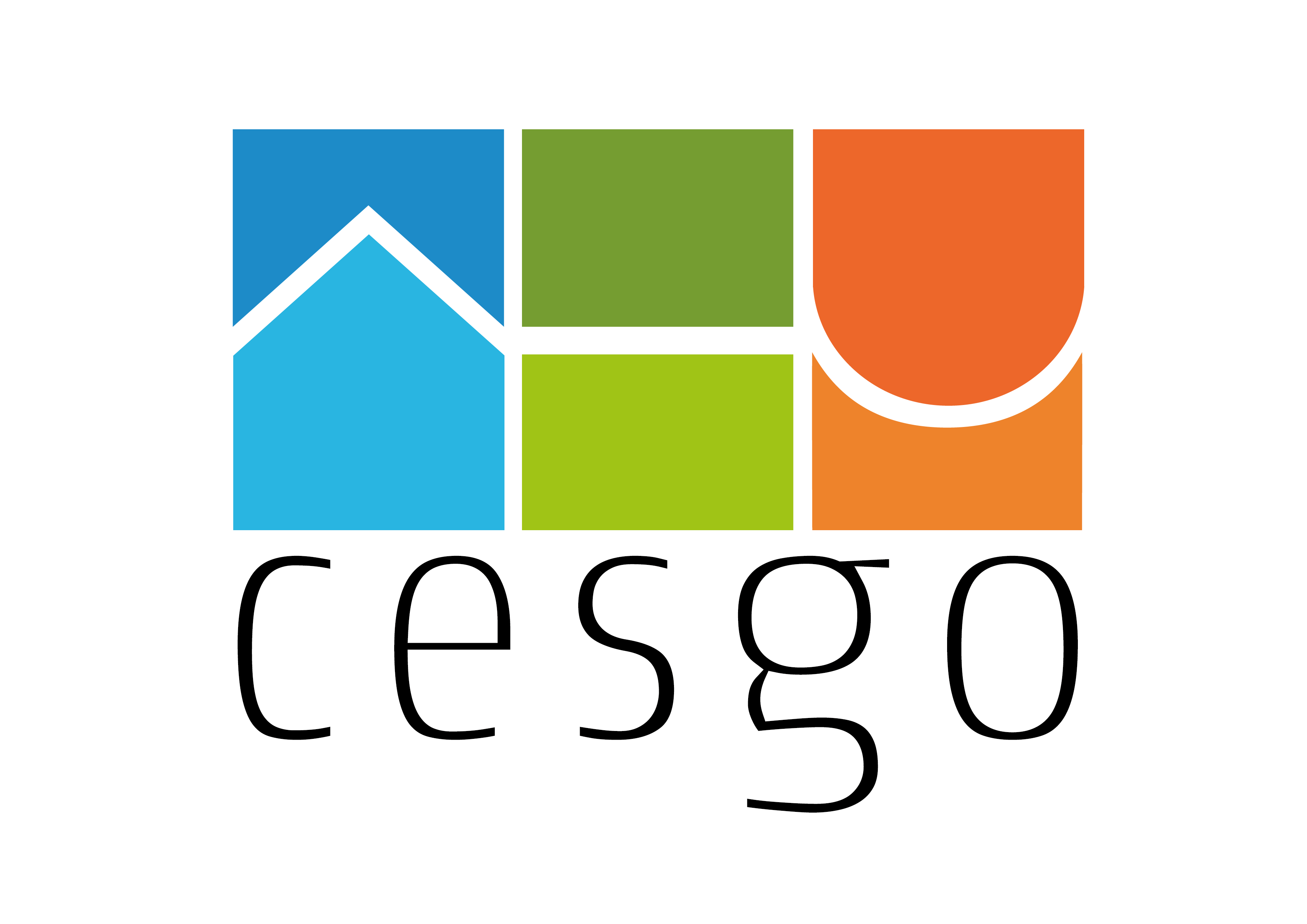 CeSGO Collaboration
